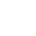 WBR_Icons_White_Energy.png