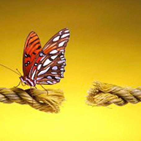Les cordes éthériques ou liens d'attachement