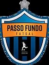 PASSO_FUNDO_FUTSAL-removebg-preview (1).png
