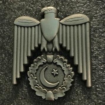 Shaheen SoloTurk Silver Badge