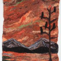 Lone Desert Tree.jpg