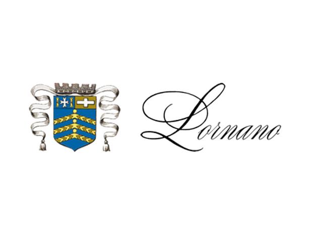 VVI logo udkast-2.png