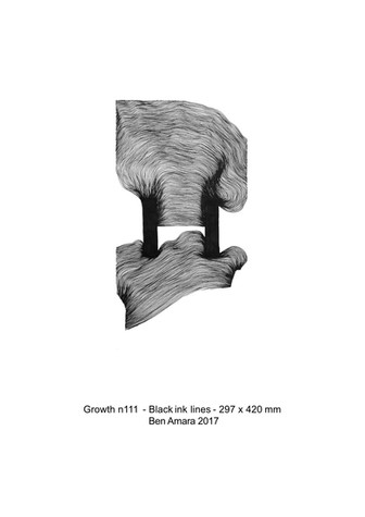 Dossier d'Artiste BEN AMARA 2019[115]_11