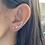 Thumbnail: Star Ear Crawler