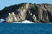 half-day charters British Virgin Islands