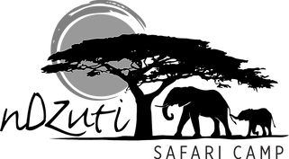 Ndzuti Logo.png