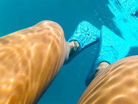 Flipper Feet - StudioSisson