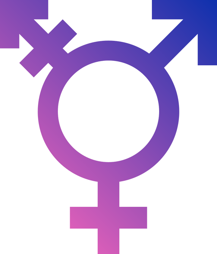Reforming the Gender Recognition Act 2004