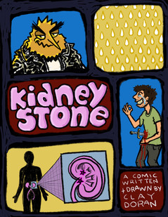 KidneyStone Cover
