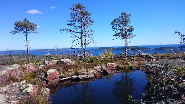 View from Skuleskogen park