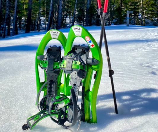 2020_Snowshoes_Sweden.jpeg