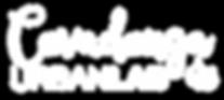 logo COVURBLAB_WHITE.png