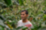 IMGP2071.jpg