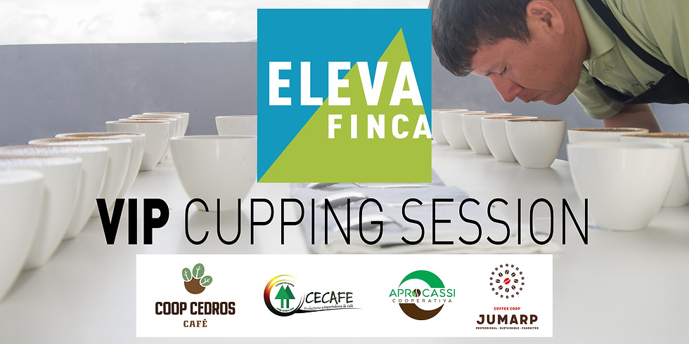 ElevaFinca VIP cupping session