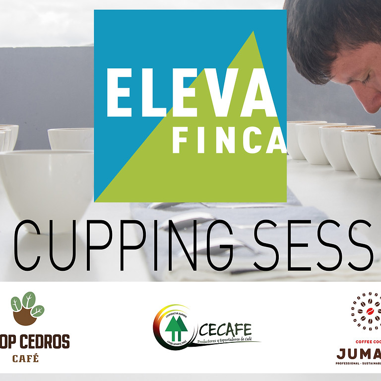 ElevaFinca Cupping session