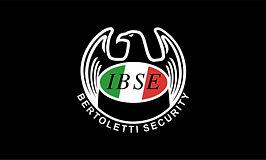 IBSE 1.jpg