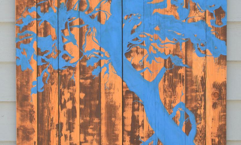 Blue Scint