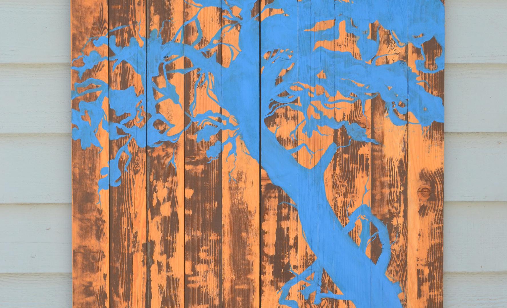 Blue Scint Detail