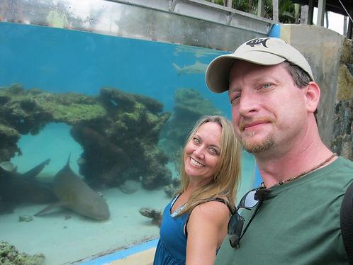 Aquarium fish tank maintenance cleaning
