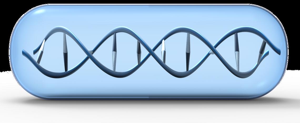 My DNA My Medicine. Pharmacogenomics Company based in San Antonio, TX.
