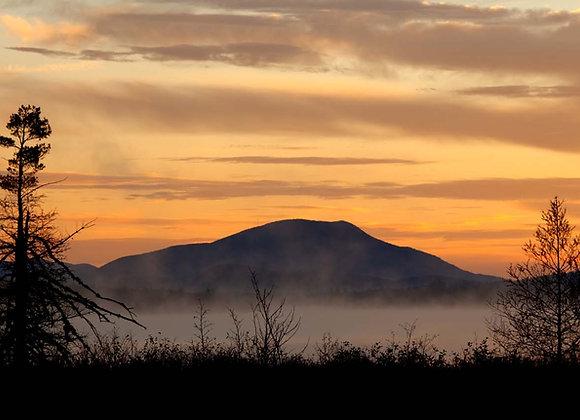 Blue Mountain Morning II