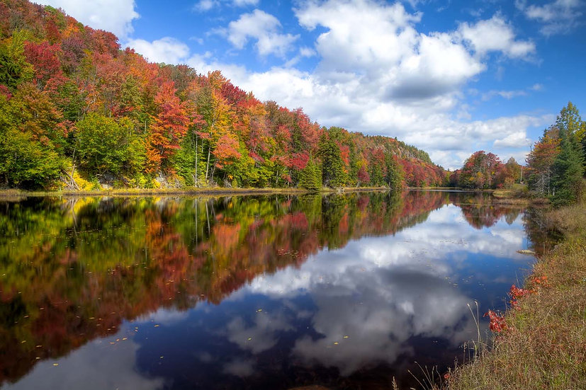 Bald Mountain Pond