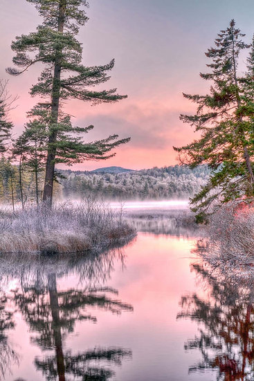 Frosty Morning at Lower Browns Tract Pond