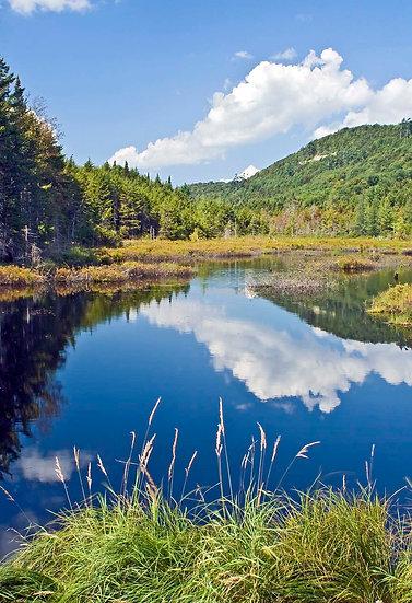 Moose River Plains