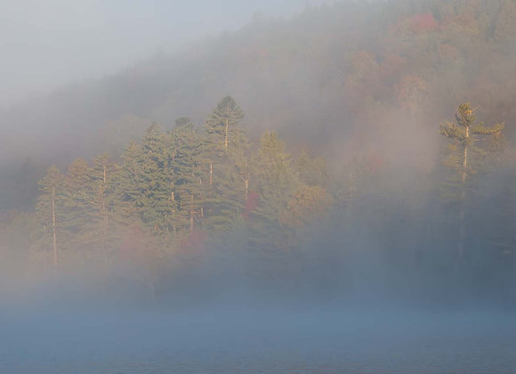 Morning Fog at Upper Brown's Tract Pond