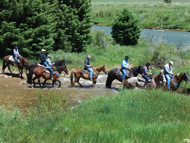 Horseback Riding Along the Gallatin