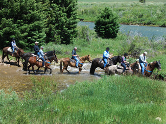Horseback Riding Along the Gallatin