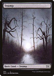 2xm-377-swamp.jpg