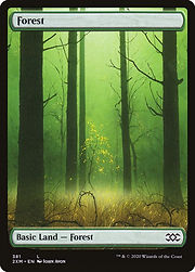 2xm-381-forest.jpg