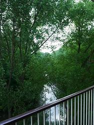 zicht op het Beatrixpark