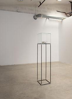 L'oeuvre au corps — ceci est ma mémoire. Cube en verreposé sur un dais d'acier.