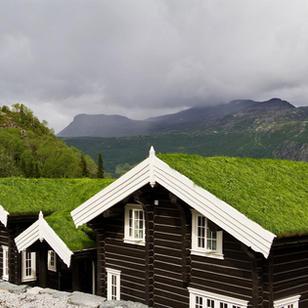 Hytte - Ragnarbu, Hemsedal