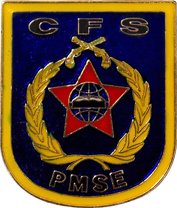 DISTINTIVO DE CURSO CFS / PMSE
