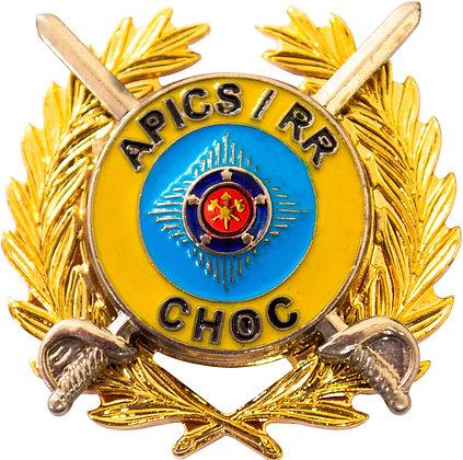 DISTINTIVO DE CURSO APICS / RR CHOC