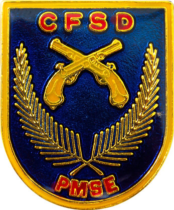 DISTINTIVO DE CURSO CFSD / PMSE
