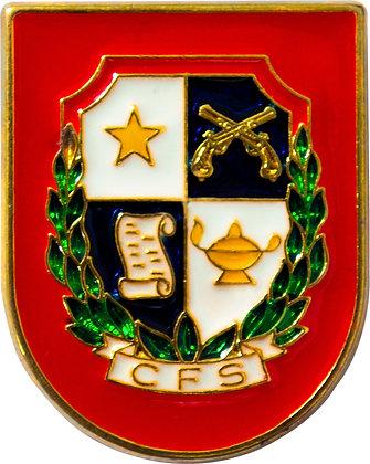DISTINTIVO DE CURSO CFS
