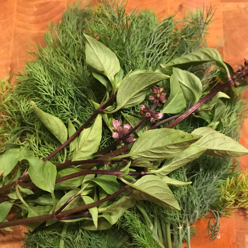 Thai basil and fresh Dill from C&L Farms Grows farm