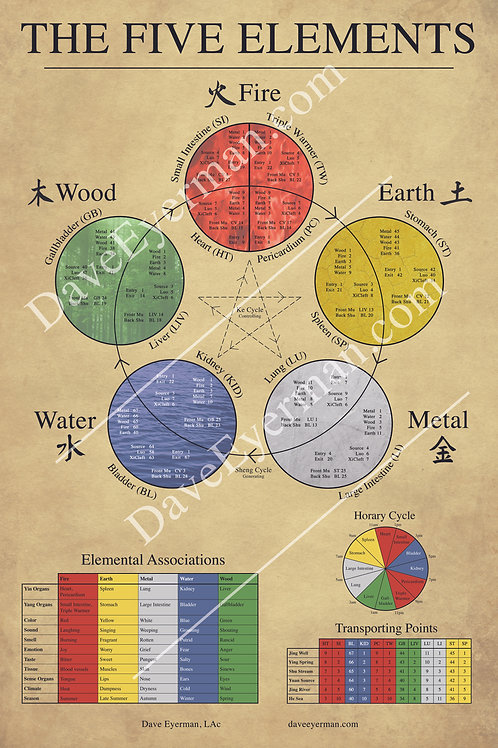 Five Elements of Chinese Medicine Poster