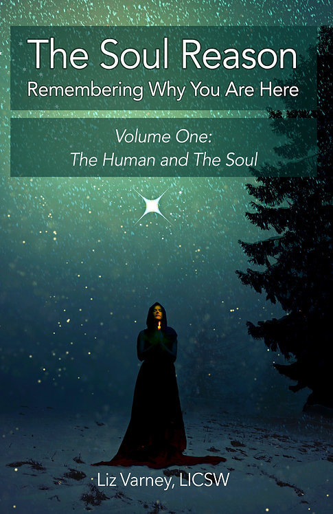 The Soul Reason, Volume One: The Human and The Soul