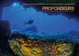 """""""PROFONDEURS"""" exposition du 16 oct. au 6 nov. 2020 - photographies sous-marines PHOCTOPUS"""