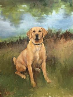Dixie Oil on Canvas 18x24