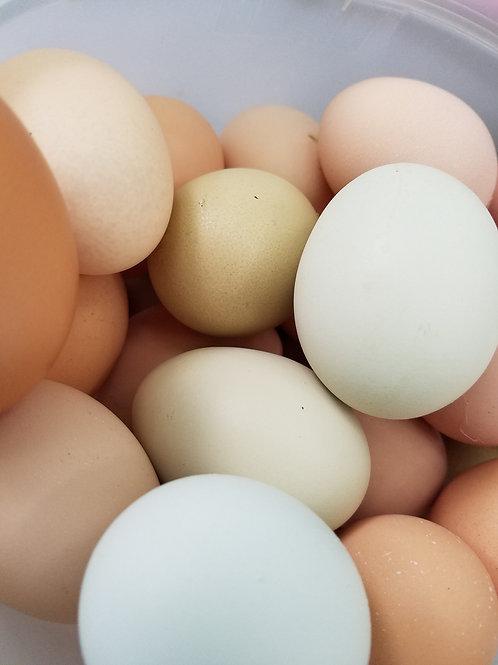 Eggs - Rainbow