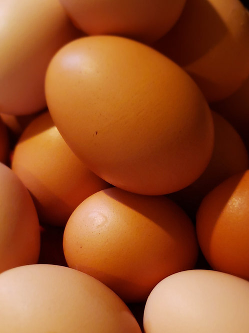 Eggs - Brown