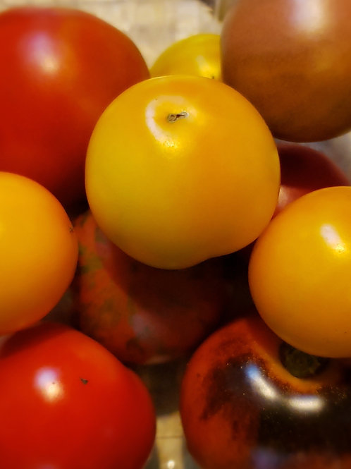 Tomatoes - Mixed Cherry