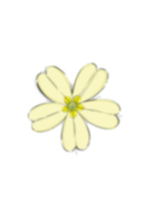 Primrose_Lodge_Logo 2.JPG