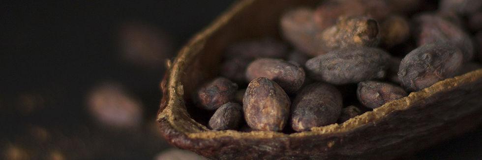 Bannière-Puerto-Cacao-formulaire.jpg